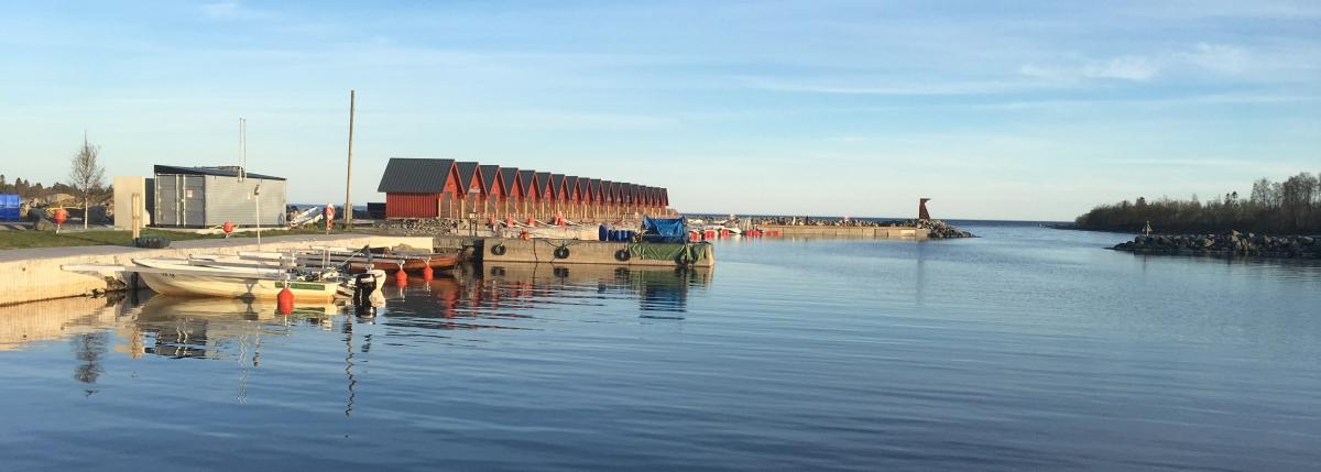 Rovögern-ställplats vid havet